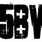 5bv-2010-1